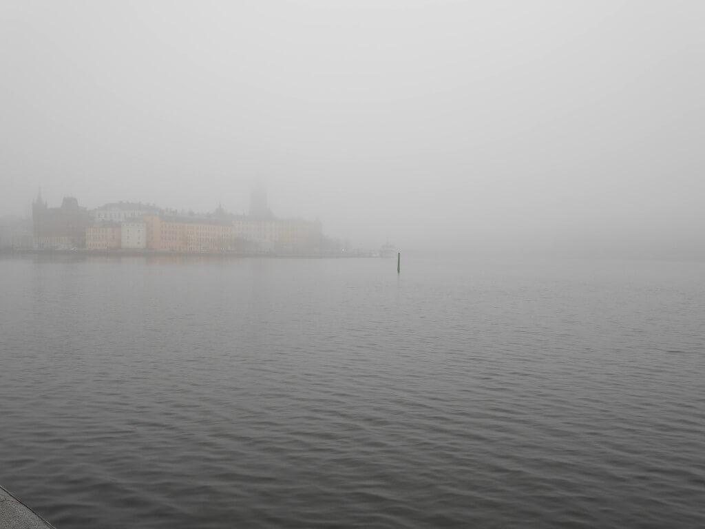 stockholms stadshus tove castor
