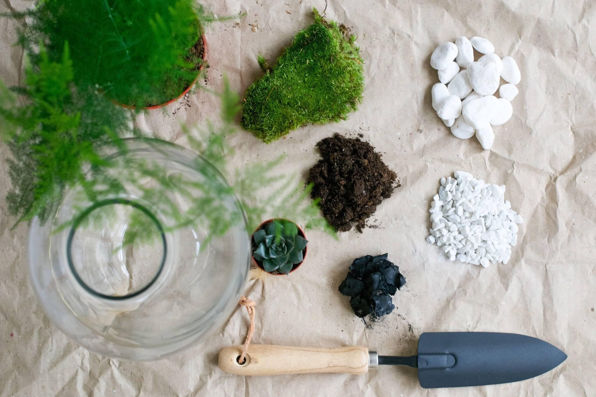 Växtterrarium flatlay