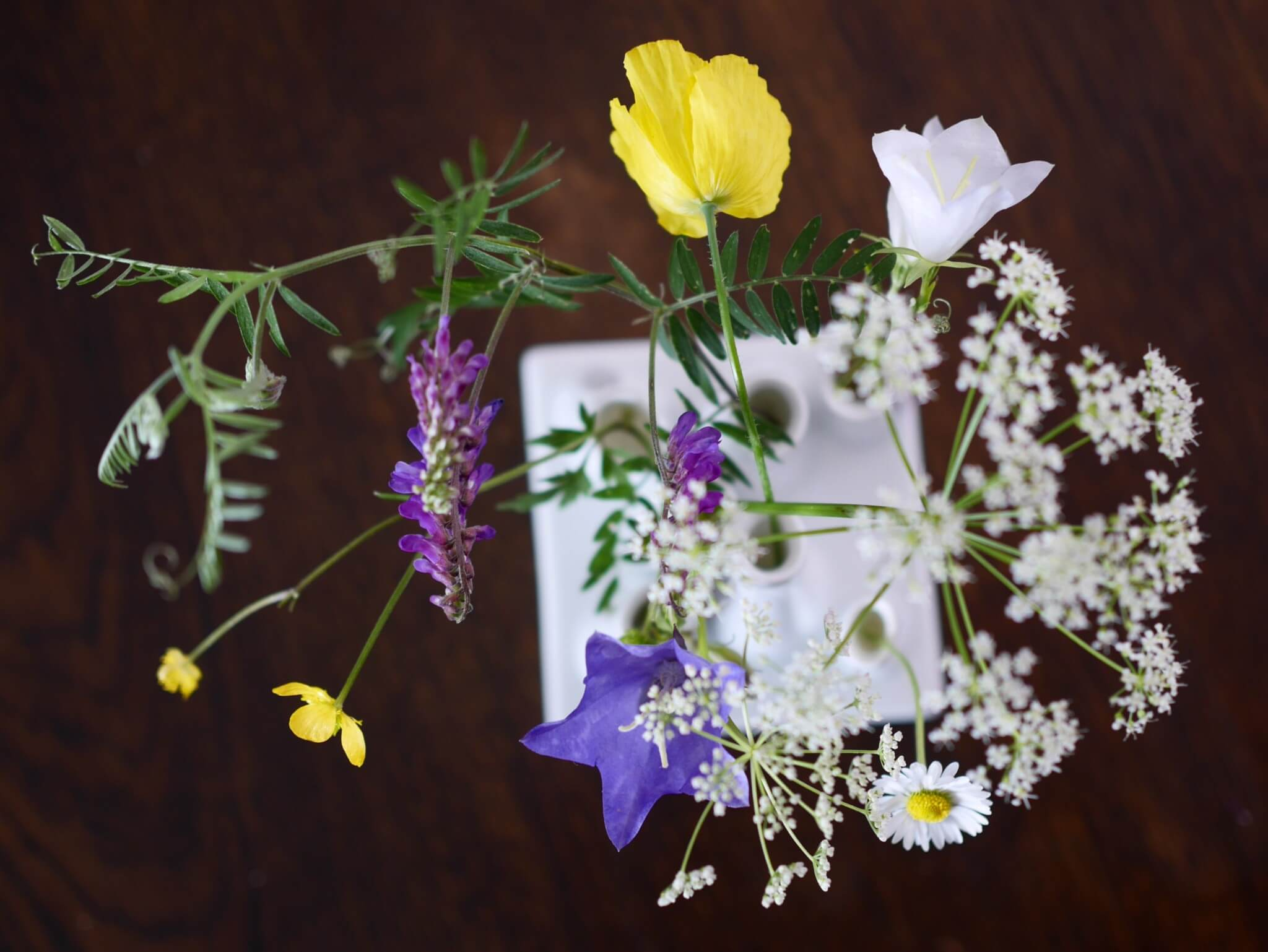 7 sorters blommor Karin Uggla