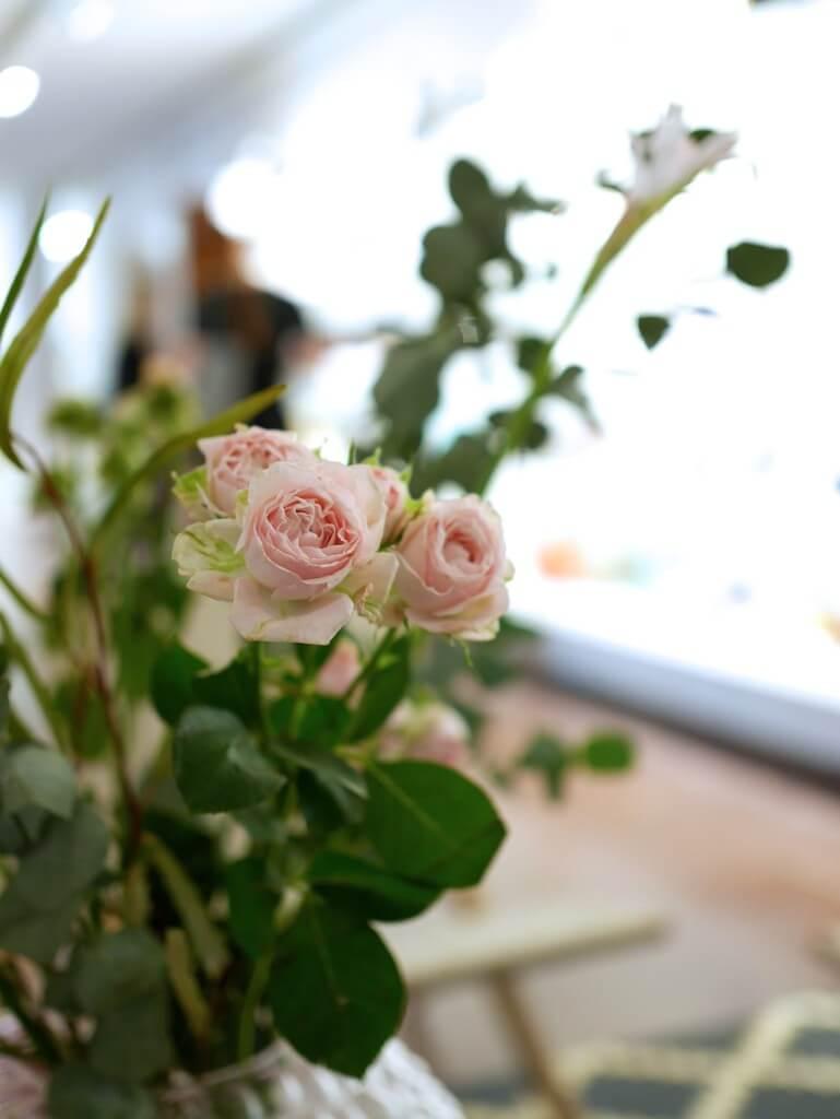 presskontakterna beauty