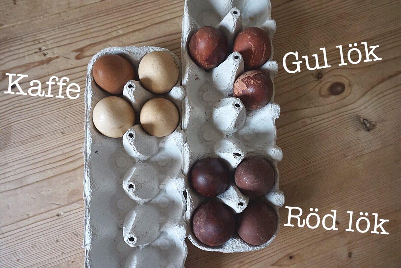 Färga äggen med lökskal